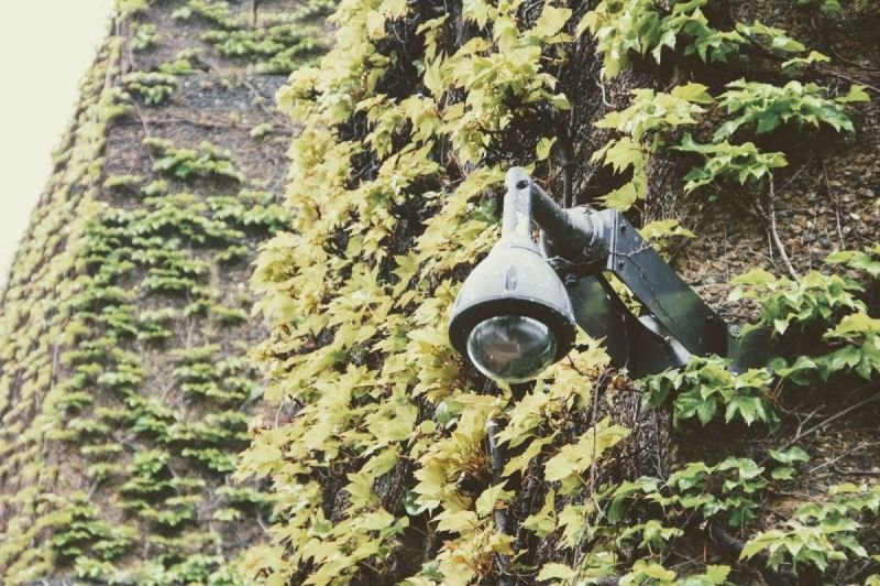 Surveillance / Investigative Services