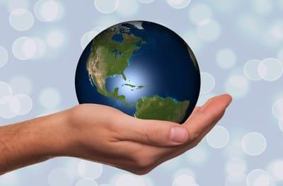 סניפי הארגון הבינלאומי ואנשי קשר