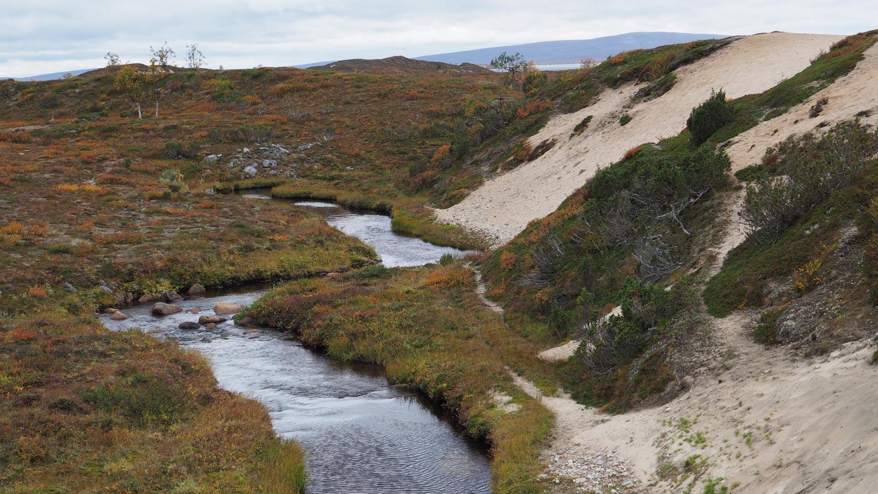Kuvassa keskellä pieni joki. Joen vasen ranta on tasaista nummea, mutta oikealla puolella on jyrkästi nouseva hiekkadyyni.