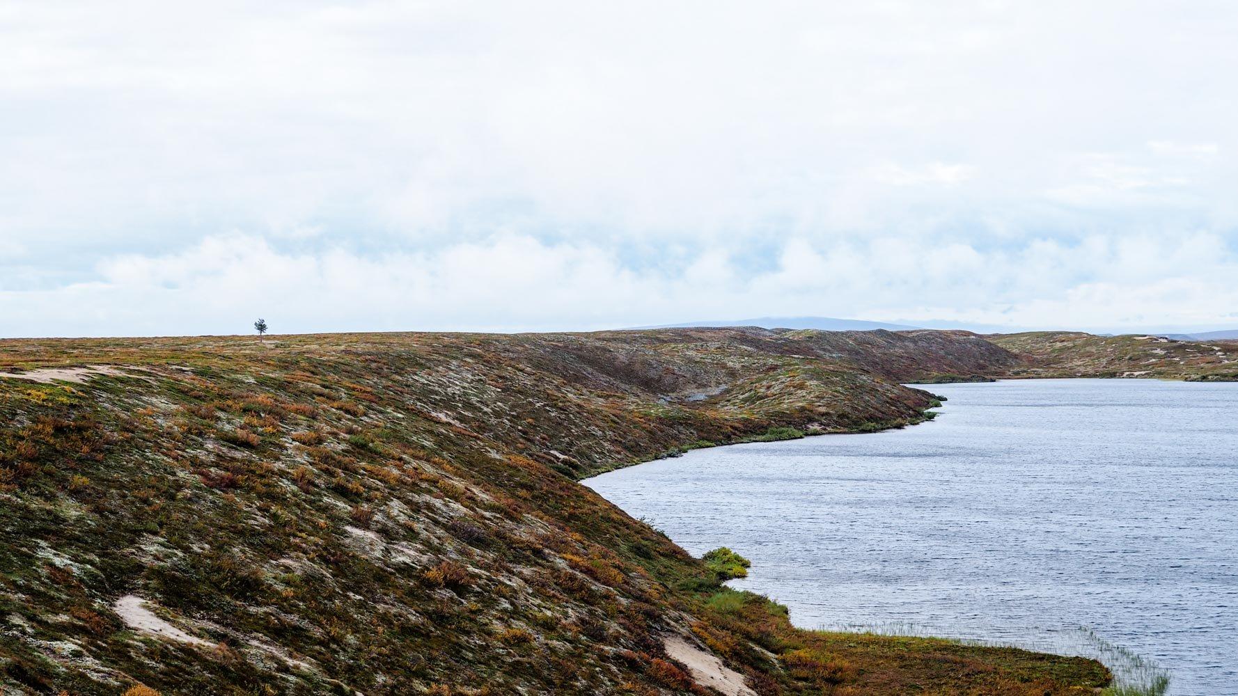Kuvassa oikealla järvi ja vasemmalla jyrkästi ylöspäin nouseva rantadyyni.