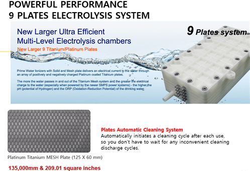 Alkaline Water Ionizer: Electrolysis chamber