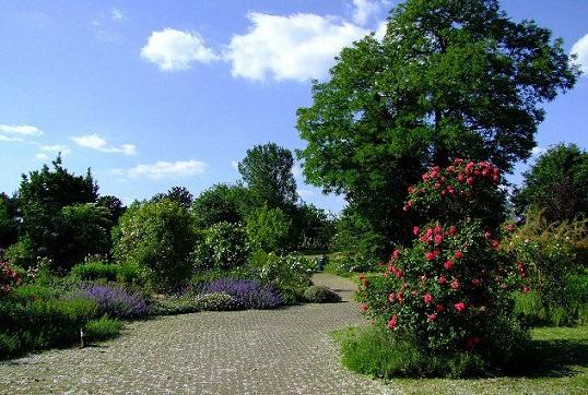 حديقة دوسلدورف النباتية من افضل اماكن السياحة في مدينة دوسلدورف
