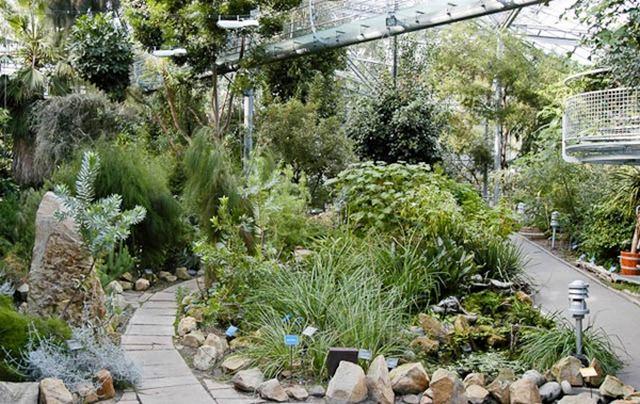 حديقة هورتوس بوتانيكس من افضل حدائق امستردام السياحية