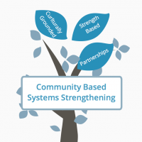 Community Systems Strengthening