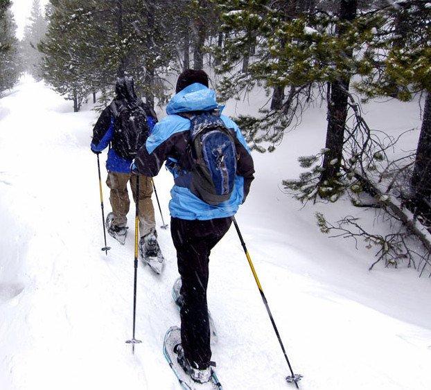 Trekking com raquetes