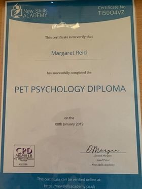 Pet Psychology Diploma, Canine Home Boarding & Dog Walking Diploma, Canine First Aid.