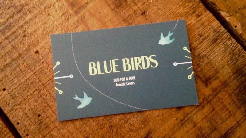 BLUES BIRDS duo, pop, folk, variétés internationales