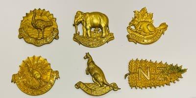 Squadron Headdress and Collar Badges