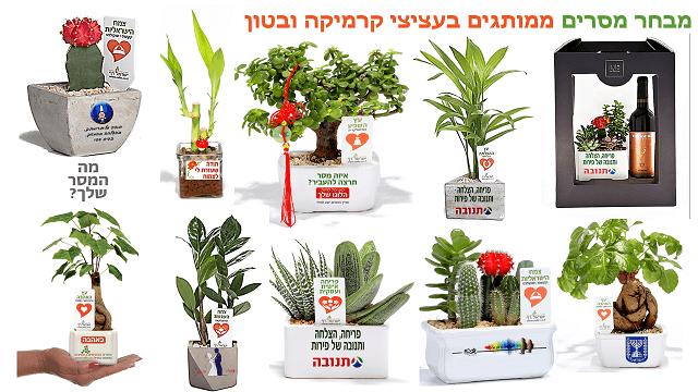 מתנות לראש השנה, עציצים ממותגים, מתנות לעובדים והלקוחות לחיזוק הקשרים לאור המצב.