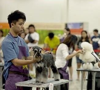 SKC GROOMING COMPETITION 2012