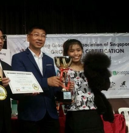 DGA GROOMING COMPETITION 2014