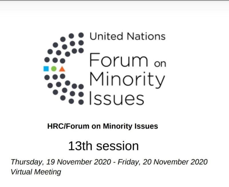 الدورة الثالثة عشر للمنتدى المعني بقضايا الاقليات في جنيف