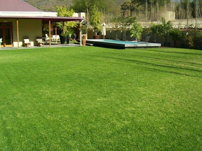 Lawn Maintenance Programmes