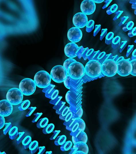 DNA Marking