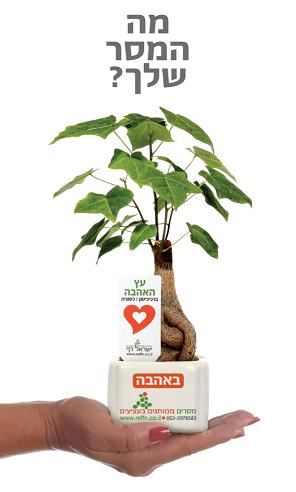 מוצרי פרסום, מבחר מסרים ממותגים בעציצים למתנות ולאירועים