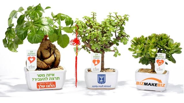 מתנות ממותגות לראש השנה, מבחר מסרים ממותגים בעציצים