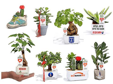 מתנות לראש השנה, עציצי בטון במבצע, מתנות לעובדים והלקוחות