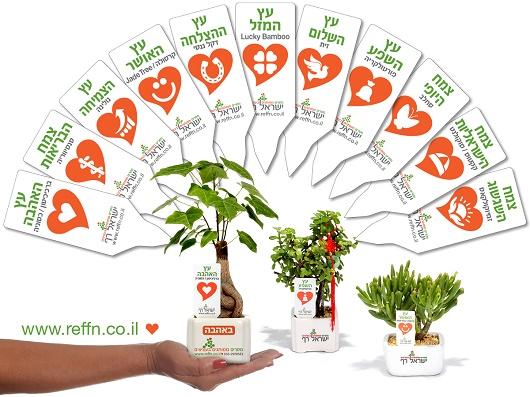 מתנות ממותגות לראש השנה, סרטון עציצים ממותגים עם מסר  אישי ממותג