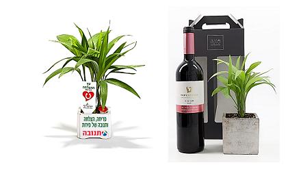 מארזי שי, מארז מהטבע, מארז קטן  עץ ההצלחה ויין