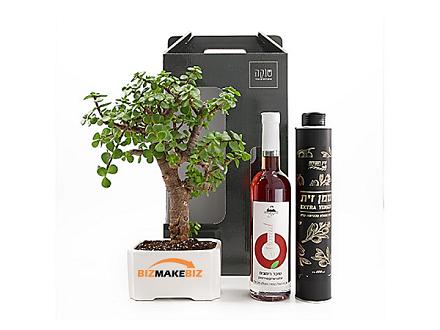 מארז שי, מארזי שי, עציצים ממותגים, מוצרי פרסום ומתנות, מתנות לחגים,