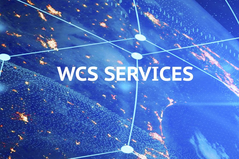 WCS Professional Services