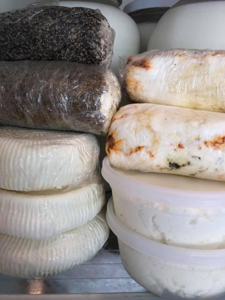 Artisan Cheese Making