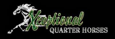 Xceptional Quarter Horses