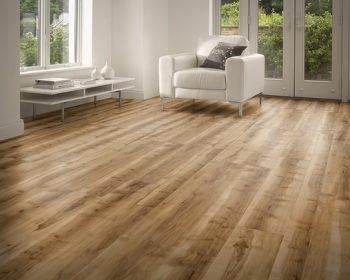 Why Choose LVT?
