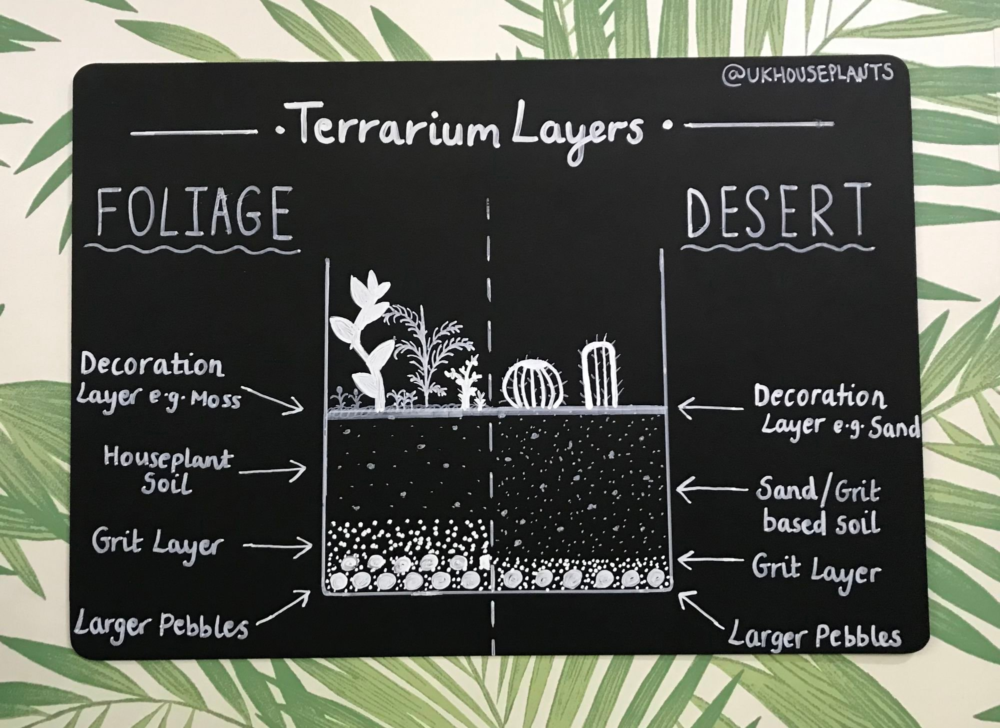 The Best Step By Step Guide For Making A Terrarium
