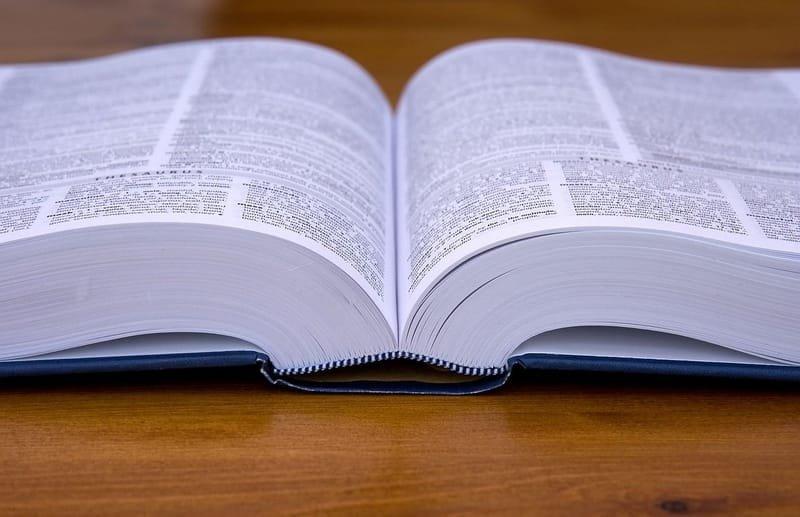 The LDR Manual