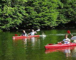 Kayak120