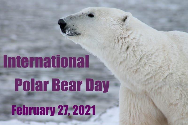 International Polar Bear Day, 02/27/2021