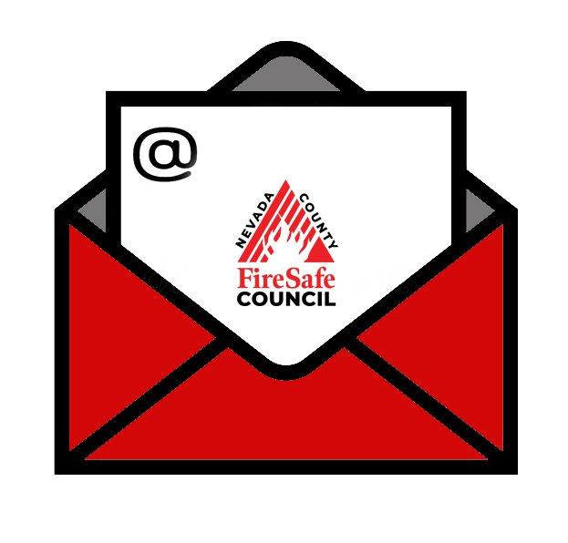 FSCNC Newsletter
