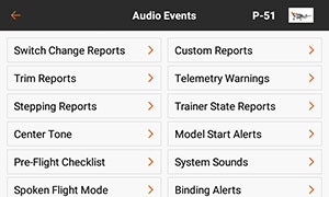 PROGRAMMABLE VOICE AND AUDIO ALERTS