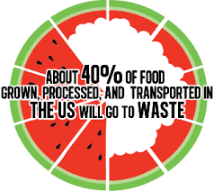 Image result for 40 of food is thrown away