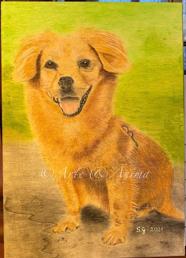Ritratto su legno compensato con colori caran d' ache luminance e pastelli Rembranddt