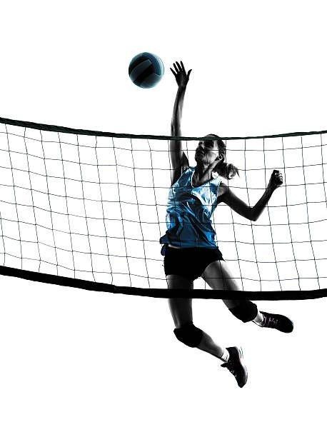 Volley D5