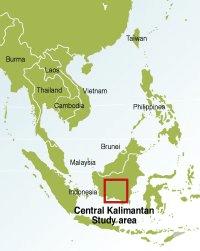Kalimantan study area
