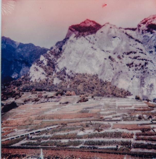 Les vignes de Clément Magliocco, à Chamoson, dans le vignoble valaisan.