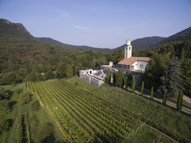 Les vignes de la cave Fa'wino à Mendrioso dans le vignoble tessinois