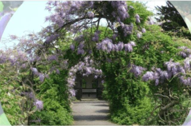 Tessier Gardens