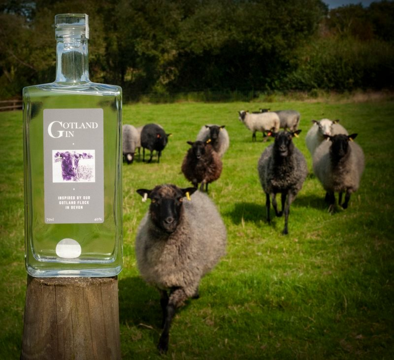 Full Gotland Gin Experience