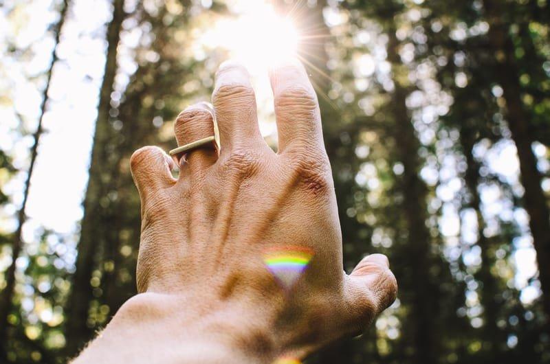 SPIRITUAL COMPANION / DIRECTOR