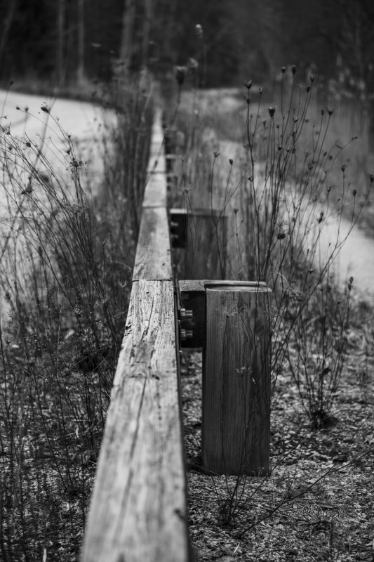 Old abandoned guardrail