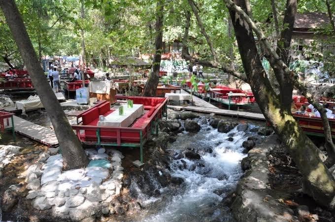 مطاعم النهر اولوبينار