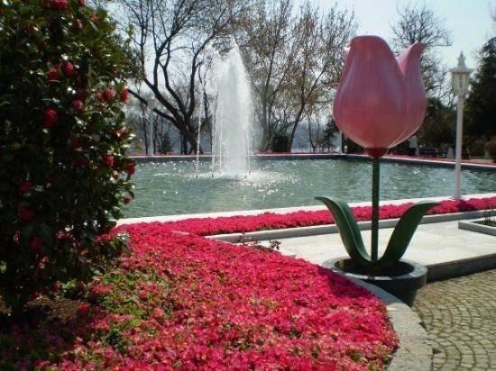 حديقة اميرجان كورسو في اسطنبول