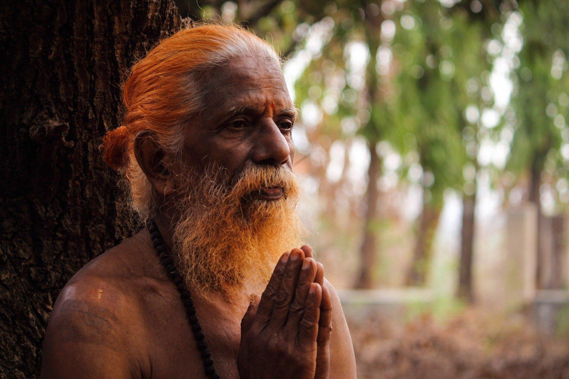 תפילה ביער, איפה אפשר להתפלל בכיפור בזמן קורונה, סיפורי חז