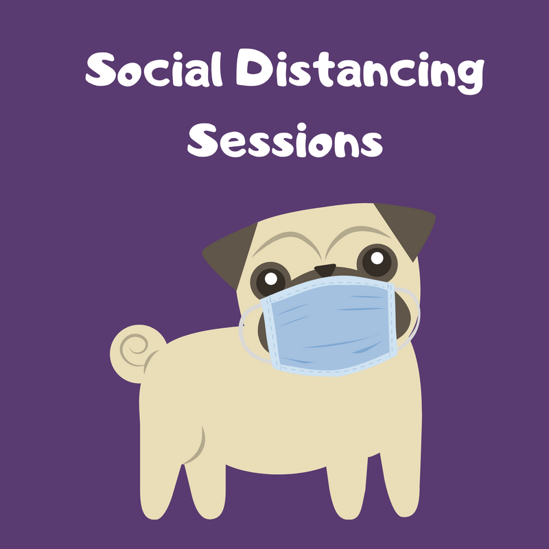 Social Distancing Training Sessions - ON HOLD DUE TO COVID RESTRICTIONS