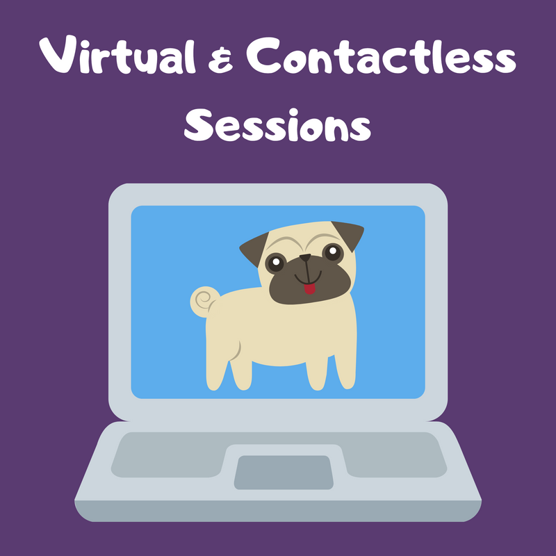 Virtual & Contactless Training Sessions