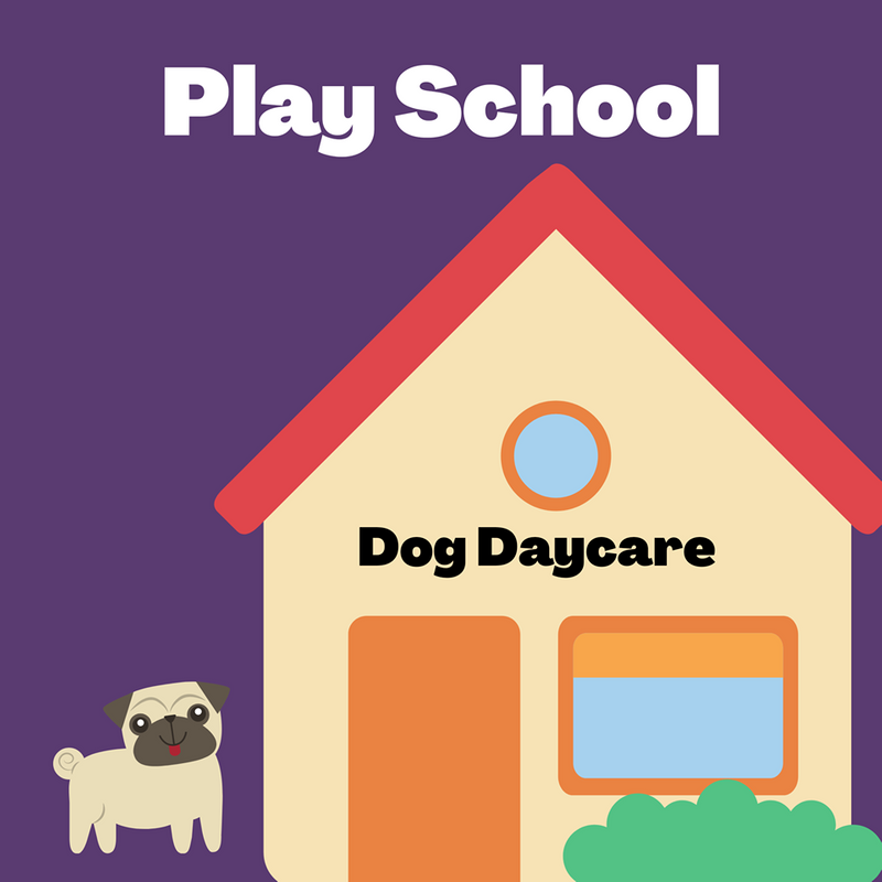 Daycare With Training (Playschool)